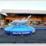 Delfin-Hüpfburg-1024x1024